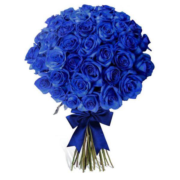 Розы Эквадор синие