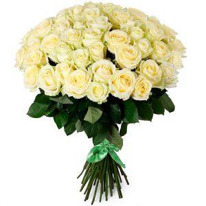 Розы Эквадор белые
